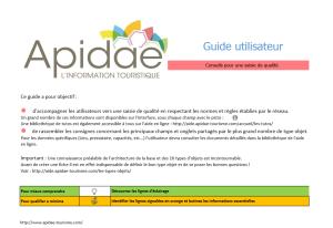 guide_saisie_apidae_1